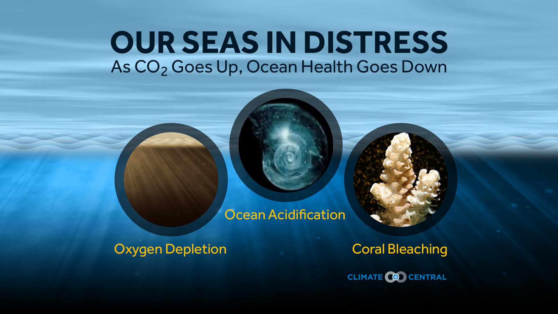 Ocean Health Overview
