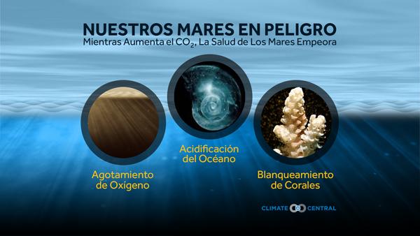 Información general sobre la salud del océano