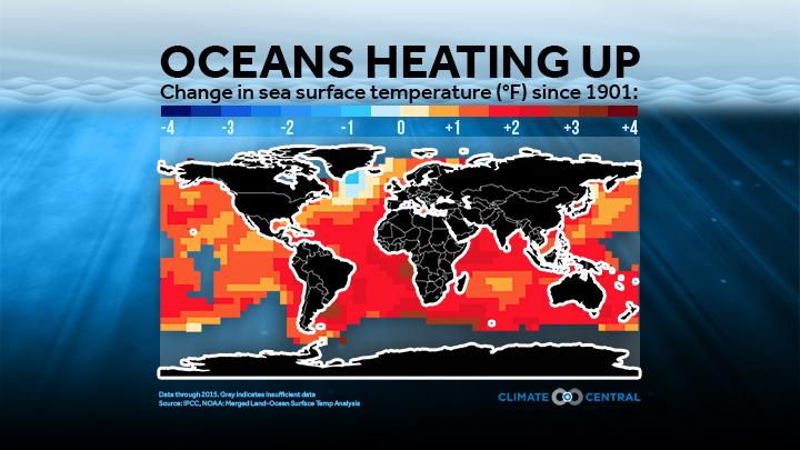 Global ocean temp since 1901