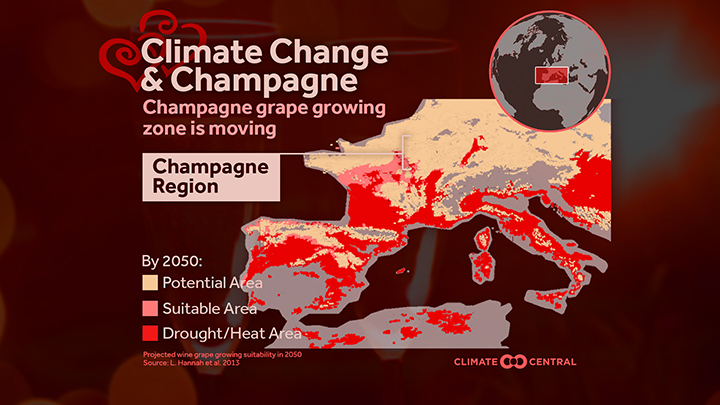 Map of ideal growing zones for grapes (champagne)