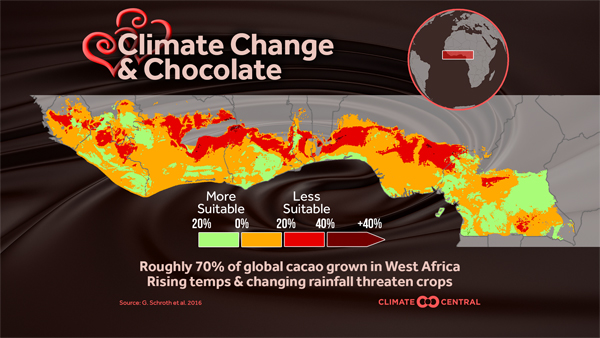 Map of sustainability for cacao growing (chocolate)